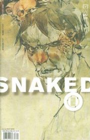 Snaked #2 (2008) Ashley Wood IDW Publishing comic book SALE